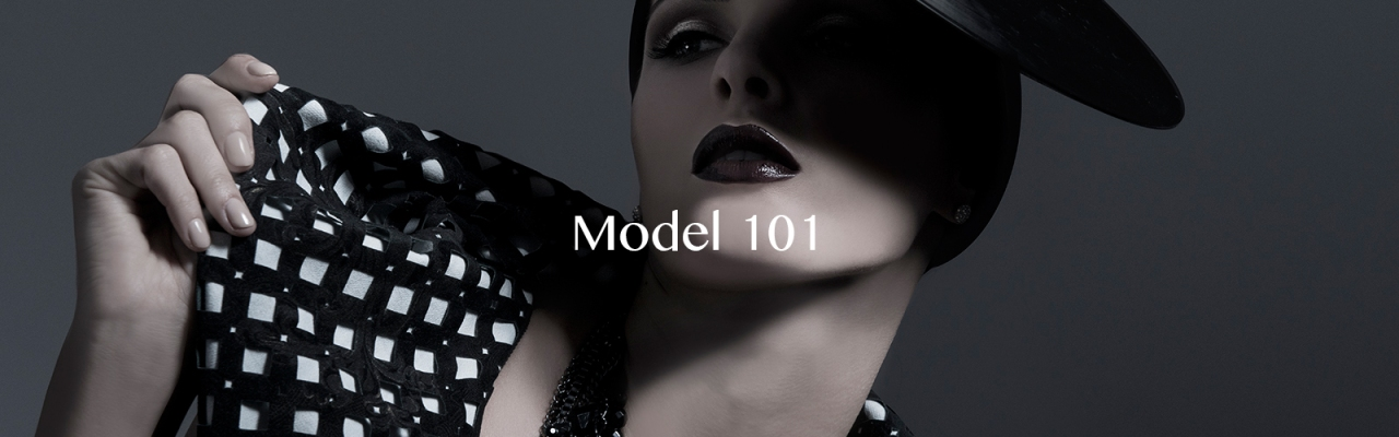 Model 101 header with text-new